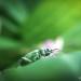 Minimalphotografie von Felix Engel thumbnail